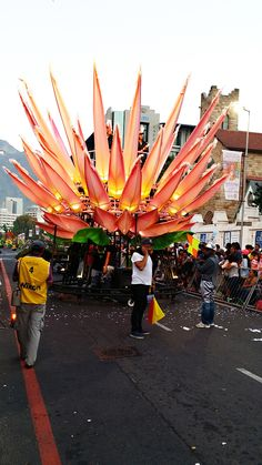 IN FULL BLOOM Breath-taking sights at #CapeTownCarnival 2015!