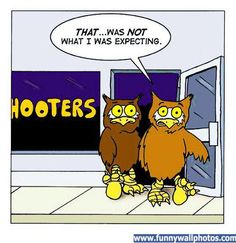 search results for �hooters calendar owls 2015� � calendar