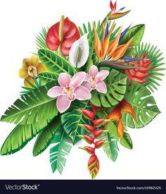 Arrangement from tropical plants vector image on VectorStock Tropical Flowers, Tropical Flower Tattoos, Exotic Flowers, Tropical Plants, Jungle Flowers, Plant Vector, Flower Tattoo Shoulder, Plant Painting, Hawaiian Tattoo
