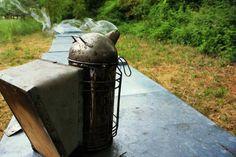 #iltempodelmiele : il calendario dell'apicoltore è scandito anche dall'uso dei suoi strumenti più importanti, alcuni addirittura vitali, come l'affumicatore, con cui l'apicoltore può avvicinarsi senza pericolo alle api, tranquillizzandole per mezzo del fumo che viene soffiato sull'alveare bruciando della juta senza fiamma.