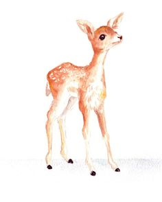 Little Fawn 8.5x11. Watercolor Reproduction by Meant4amoment