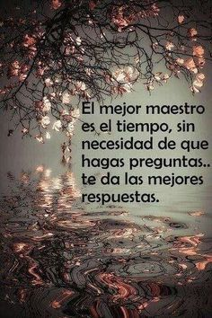 Frases emocionales para el alma - Emotional quotes for the soul Frank Kafka, Abraham Hicks Quotes, Spanish Quotes, More Pictures, Law Of Attraction, Bible Verses, Nostalgia, Life Quotes, Bloom Quotes