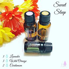 Day 63 of #100Diffuserblends - Sweet Sleep is another one of my favorites for a restful and peaceful night of sleep. Something about Wild Orange at night that makes me so calm and relaxed! Cardamom promotes good respiratory functions and Lavender promotes a restful night of sleep! This blend is perfection #DōTERRA #essentialoils #sweetsleep #sleeping #diffuserblend #sharing #giftoftheearth #naturalsoltions #healthylifestyle #holistic #allnatural#restfulsleep