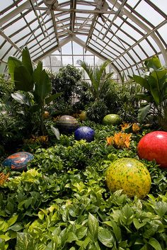 Franklin Park Conservatory by rellim, via Flickr, Columbus, Ohio - 400 species of plants, in environments that include desert and rainforest habitats. Seasonal displays of blooms, from colorful bulbs to varieties of conifers and grasses, span the outdoor gardens. There is also a unique glassblowing pavilion for demos and classes.