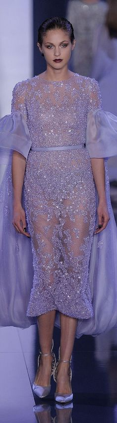 Ralph & Russo Fall 2014-2015 Couture Collection