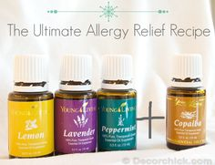 Today's post I am particularly excited to write. So read it. Don't skip and read just the pictures. 🙂 So allergy season is in full swing now, at least it is down in the South. Have I always had aller Source by Essential Oils Allergies, My Essential Oils, Essential Oil Blends, Young Living Essential Oils Recipes Cold, Copaiba Essential Oil, Young Living Allergies, Les Allergies, Seasonal Allergies, Natural Allergy Relief