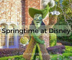 Springtime at Disney - The Blogorail