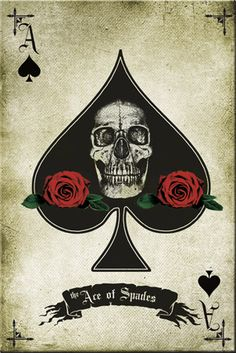 Skull and Roses - Ace of Spades