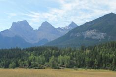 Canmore Trails View