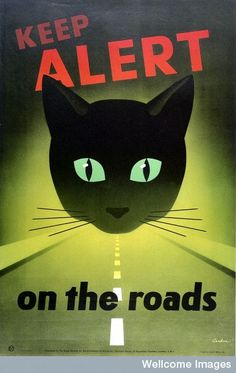 The head of a cat with green eyes wide open above a road. Leonard Cusden