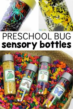 Make bug sensory bottles with your preschoolers! These insect and bug discovery bottles are great for a variety of learning. Pair them with an insect theme, a butterfly life cycle, or anytime through the year! Sensory Activities, Activities For Kids, Discovery Bottles, Butterfly Life Cycle, Sensory Bottles, Spring Theme, Life Cycles, Cool Kids, Bugs
