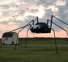 6-legged 'spider' bug, just off Hwy 77 near Lexington, Oklahoma