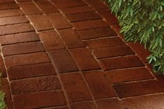 Spring is the perfect time for DIY backyard projects. If you want to spend a memorable day outdoors with some friends and family, then this list is for you! Brick Pathway, Paver Walkway, Walkways, Walkway Ideas, Driveways, Brick Driveway, Path Ideas, Backyard Projects, Outdoor Projects