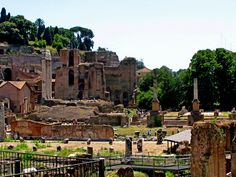 Ruins of the Forum in Rome