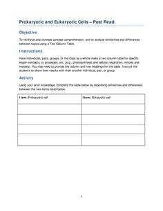 Cells worksheets anima and bacterial cell comparing prokaryotic and eukaryotic cells post read fandeluxe Choice Image