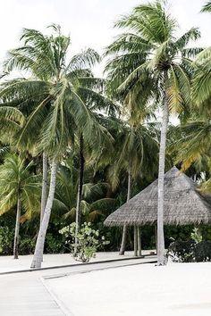 Beach Trip, Summer Beach, Goin Coastal, Castaway Island, Travel Destinations Beach, Beach Travel, Tropical, Desert Island, Treasure Island