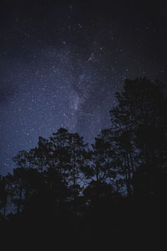 STARRY NIGHT SKY Matialonsor photo