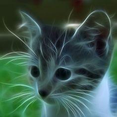 Fractal Art Kitten