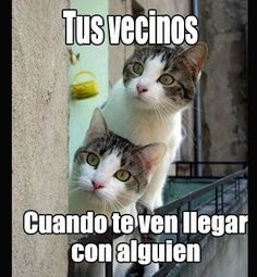 Funny Spanish Jokes, Cute Spanish Quotes, Spanish Humor, Funny Adult Memes, Funny Jokes, Mexican Memes, Quotes En Espanol, Funny Phrases, Best Memes