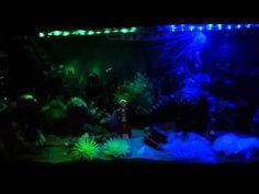 My Bioshock aquarium (Fishless)