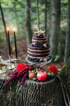 moody naked cake with figs and blackberries for a forest themed wedding
