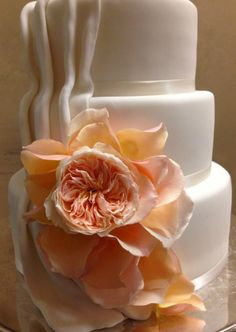 One garden roses with additional petals added!  Yum!