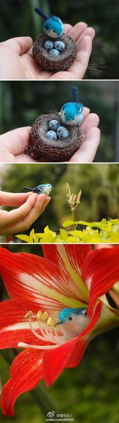 配小鸟巢做...来自猫宅主人的图片分享-堆糖