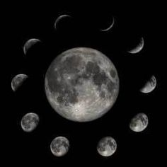 Planting a garden based on the cycles of the moon has been practiced as long as humans have been planting food. Just as the gravitational pull of the moon affects the tides, it also has an effect on moisture in the soil.