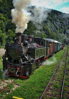 Touristic steam train in Mocanita, northern Romania By Train, Train Car, Train Tracks, Train Rides, Motor A Vapor, Old Steam Train, Visit Romania, Old Trains, Vintage Trains