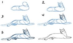 drawing animals tutorial | How to Draw Cat Bodies in Poses