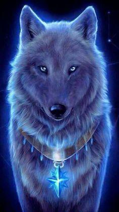 Blue colors wolf