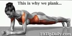 Top 3 Ab Plank Exercises - This is why you should be planking!!!