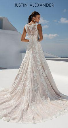 Fantasy Wedding Dresses, Pretty Wedding Dresses, Open Back Wedding Dress, Amazing Wedding Dress, Wedding Dress Sleeves, Wedding Suits, Bridal Dresses, Wedding Gowns, Sophisticated Bride