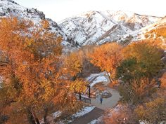 Fall in Colorado:  running trails