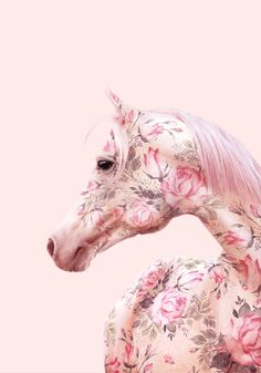 Vintage Home Interior Porches Homemade Printer Tech Key: 7725407875 Horse Wallpaper, Pink Wallpaper, Pink Animals, Cute Animals, Cavalo Wallpaper, Paul Fuentes, Unicorn Art, Unicorn Quotes, Unicorn Drawing