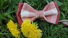SweetPink&White checkered  Betolli Bow ties for woman