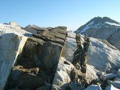 Mafic dykes in granitic rocks. Baranof Cross-Island Trail, Alaska Source: wikipedia #ScienzeGeologichePage #dyke #sill #magma