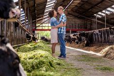 Liefde op de boerderij   Love at the farm