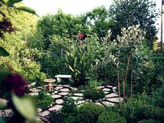 Pasadena Paradise: An Organic, Urban Vegetable Garden