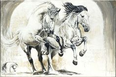 Reproductions giclées sur toile - giclée prints on canvas — Elise Genest Painted Horses, Horse Drawings, Animal Drawings, Abstract Horse Painting, Art Occidental, Oil Pastel Colours, L'art Du Portrait, Horse Sketch, Horse Artwork