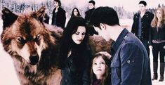 Breaking Dawn Part 2, Twilight Saga