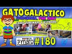 Gato Galactico, Fisiognomia, Pink Fairy, Turbinado, aspirado, tri-step, shift light e muito mais - Programa Zmaro 180