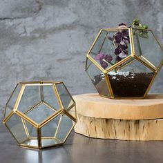 """Hira Glass Geometric Pentagon Floral Container in Clear Gold<br>5.5"""" W x 5.5"""" L x 4.5"""" H"""