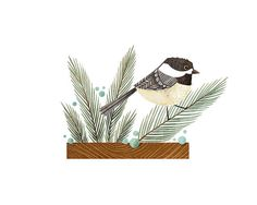 Chickadee Print bird art bird art 52 birds by TheFoxandTheTeacup I Like Birds, Little Birds, Chickadee Tattoo, Art Mignon, Art Et Illustration, Illustrations, Bird Artists, Inspirational Artwork, Bird Drawings