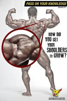 317 Best Bodybuilding Images On Pinterest Bodybuilding