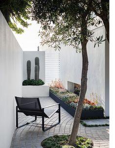A Dramatic, Multi-Tiered Coastal Garden In Gordon's Bay Small Backyard Patio, Backyard Patio Designs, Yard Design, Outdoor Spaces, Outdoor Living, Outdoor Decor, Xeriscape Plants, Deco Addict, Design Jardin