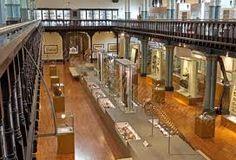 hunterian museum - Google Search