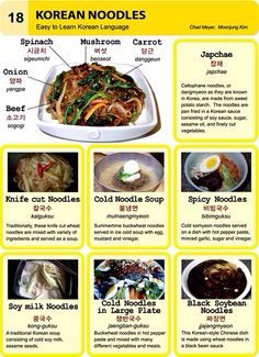 18. Korean Noodles An Illustrated Guide to Korean by Chad Meyer and Moon-Jung Kim