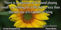 There is no passion to be found playing small in settling for a life that is  There is no passion to be found playing small - in settling for a life that is less than the one you are capable of living  For more #brainquotes http://ift.tt/28SuTT3  The post There is no passion to be found playing small in settling for a life that is appeared first on Brain Quotes.  http://ift.tt/2fqElzY