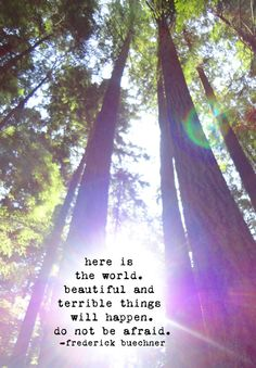 Forest Photograph with Frederick Buechner Quote by fiercegreen, $12.00
